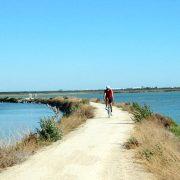 18-Andalusien-Ferien-Radfahren-im-Naturpark