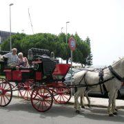 Andalusien Ferien Pferdekutsche